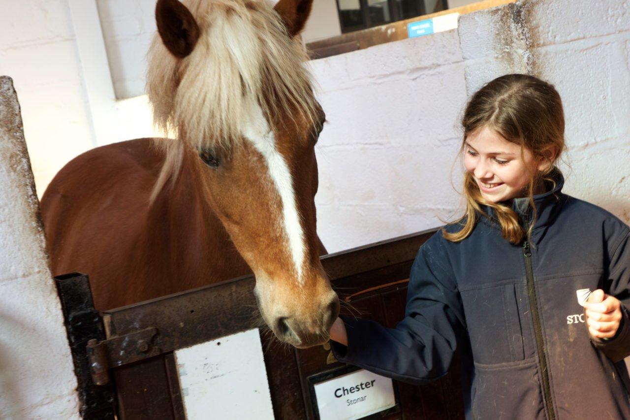 Best schools for horse lovers Stonar School
