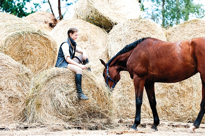 Best schools for horse lovers